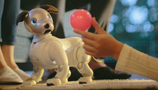 Sony ressuscite son robot Aibo doté d'une intelligence artificielle
